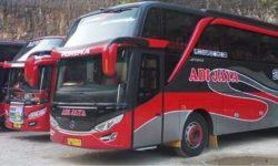 Informasi Harga Sewa Bus Pariwisata